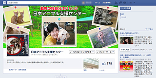 animal_support